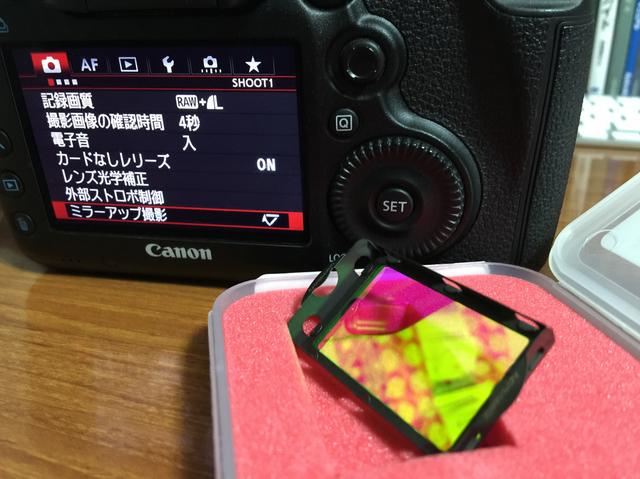 IMG_2736-iP6.jpg