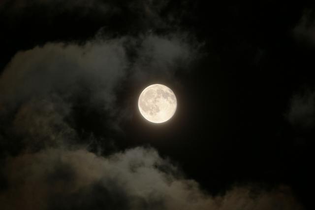 moon_geshi2.jpg